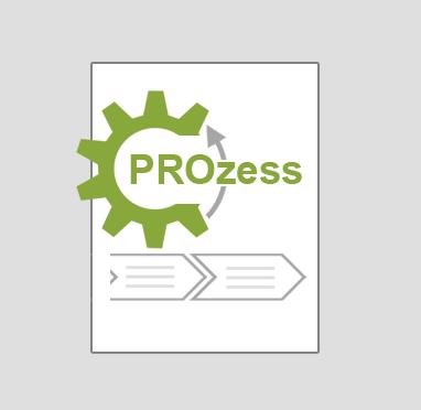 syneris Prozesslandkarte